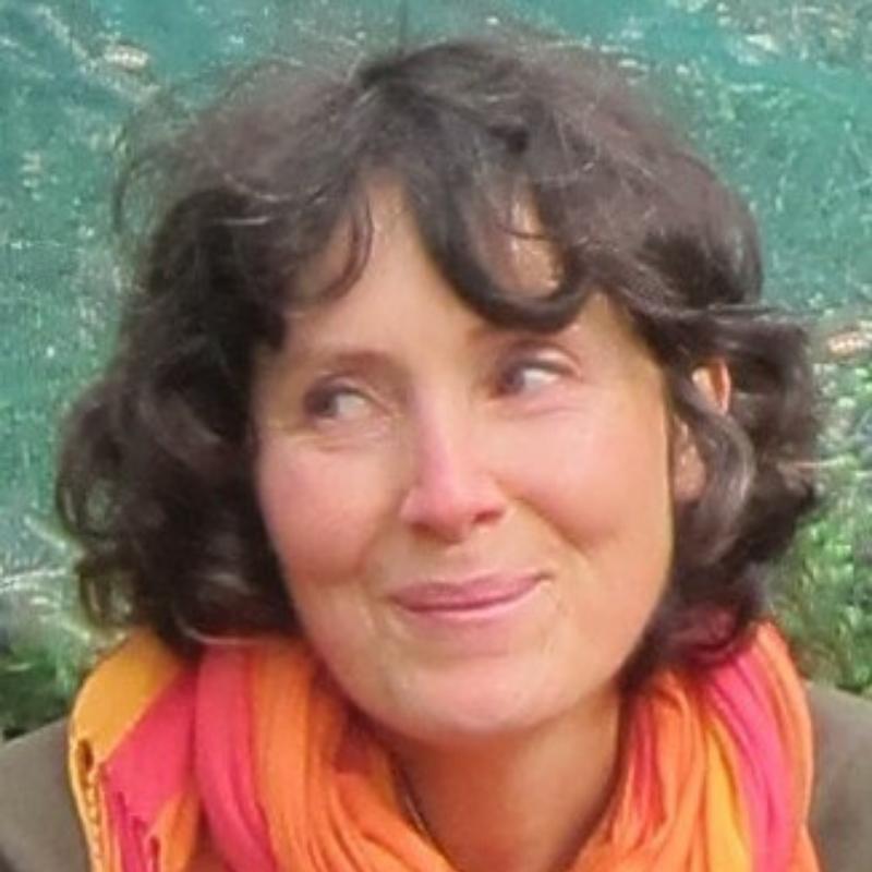 ILARIA BENECCHI